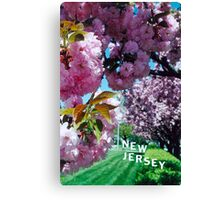 May in New Jersey Canvas Print
