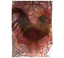 Rhode Island Red Bird Poster