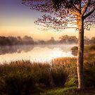 Morning light over a misty pool by Gustav Snyman