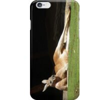 Lazy Kangaroo iPhone Case/Skin