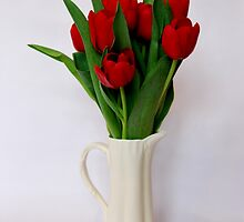 red tulips by purpleminx