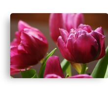 Spring - My Bliss Canvas Print