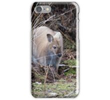 Bennett's Wallaby - Sandy Morphology iPhone Case/Skin