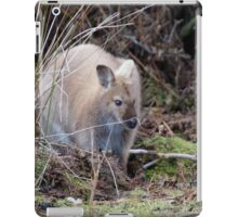 Bennett's Wallaby - Sandy Morphology iPad Case/Skin