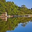 Esthwaite water  by Shaun Whiteman