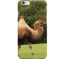 Got the hump hump iPhone Case/Skin