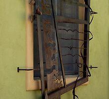 Unique Window by Lucinda Walter