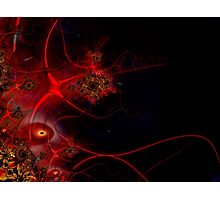 Swimming with Fishes Fractal Artwork Photographic Print