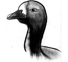 Duck Duck Photographic Print