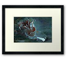 """Just as a Mermaid ,she floats at sea ..."" Framed Print"