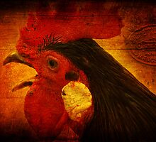 something to crow about by Clare Colins