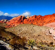 Red Rock Canyon Nevada by ╰⊰✿ℒᵒᶹᵉ Bonita✿⊱╮ Lalonde✿⊱╮