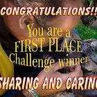 sharing and caring banner challenge by vigor