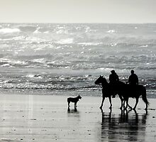 riding horses on the beach by tego53