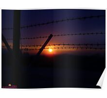 Barbed Sunset Poster