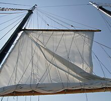 Sailing in Nova Scotia by akrolith