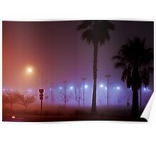 Palms in the Fog Poster