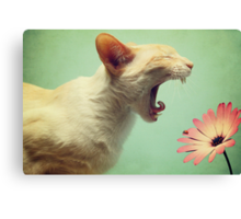 Ahhh....Chooooooo...... Canvas Print