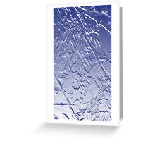 Helicopter Seed in Blue Greeting Card