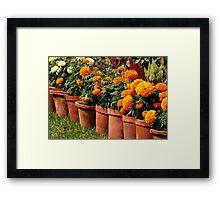 Victoria Memorial Potted Plants (Kolkata) Framed Print