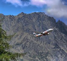 Flying Beside the Remarkables by Larry Lingard/Davis