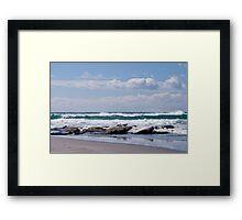 Gulls resting Framed Print