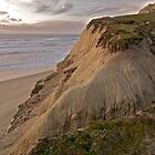 Beach Near Half Moon Bay by Scott Johnson