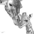 Giraffes by Alexander Churches