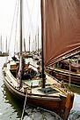 MVP68 Zees Boat, Althagen, Ahrenshoop, Germany. by David A. L. Davies