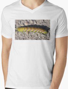 Caterpillar (Privet Hawk - Moth) Mens V-Neck T-Shirt