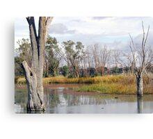 Riverland - South Australia Canvas Print