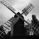 Cromer Windmill by Paul  Green