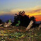 Sunset in the Ukrainian village by fenist