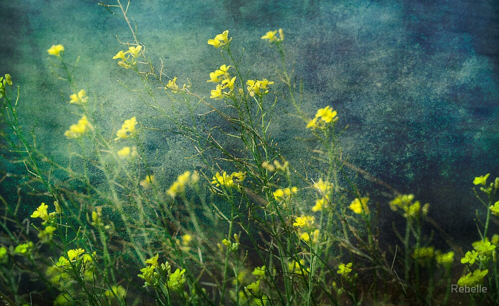 Water Weeds by Rebelle