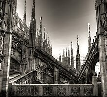 Milan Cathedral by Gavin Poh