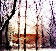 WInter home by JaydeMonster