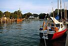 MVP65 Althagen Harbour, Ahrenshoop, Germany by David A. L. Davies