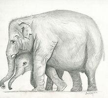 Elephants by Stormswept