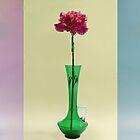 Flower in vase triptych by Martyn Franklin