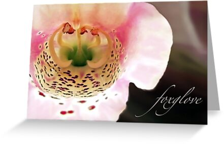 Foxglove...Helping the Heart by paintingsheep