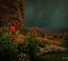 Splendor Under Southern Skies by RC deWinter