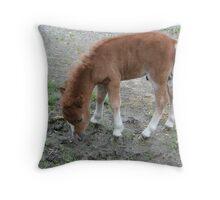 Little Jackson Throw Pillow