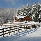 Cabin in the Snow by Hank Eder