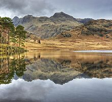 A Day In The Lakes....Blea Tarn by Jamie  Green