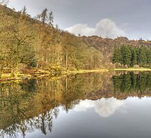 A Day In The Lakes....Yewtree Tarn by Jamie  Green