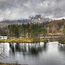A Day In The Lakes....Tarn Hows by VoluntaryRanger