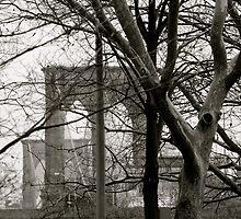 Brooklyn Bridge by garrethevans