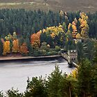 Upper Derwent Reservoir by James  Key
