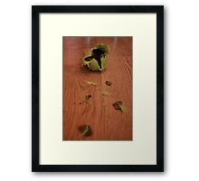 New Toys, Old Tricks Framed Print