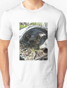 BEACH LANDSCAPES 5 Unisex T-Shirt